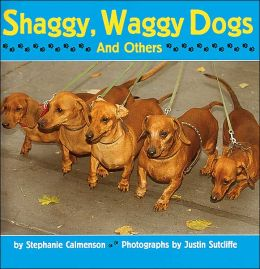 Shaggy, Waggy Dogs
