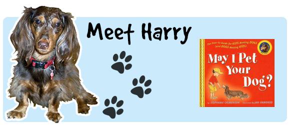 Meet Harry