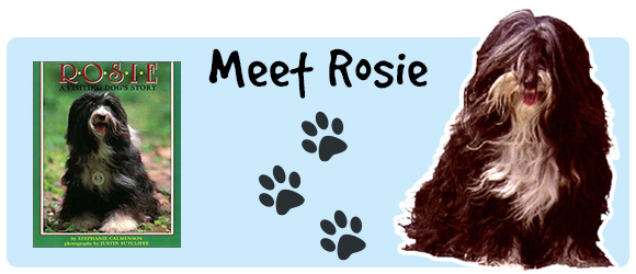 Meet Rosie